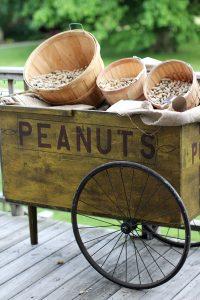 rustic peanut cart rental